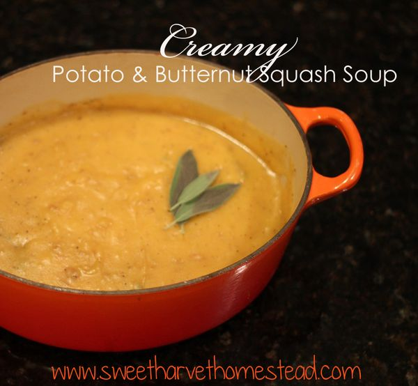 Soup_edited-1
